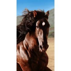 toalha-de-praia-buettner-linha-beach-collection-tropical-estampa-brown-horse