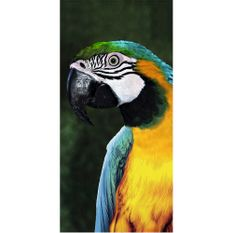 toalha-de-praia-buettner-linha-beach-collection-tropical-estampa-big-macaw