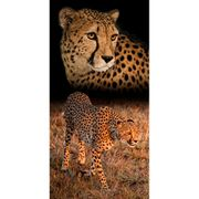 toalha-de-praia-em-algodao-76x152cm-buettner-estampa-cheetah