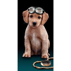 toalha-de-praia-em-algodao-76x152cm-buettner-estampa-flyng-dog
